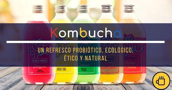 ¿Qué es la Kombucha? Foto de 5 botellas de kombucha.